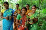 Women-with-saplings-West-Bengal-India.jpg.650x0_q85_crop-smart